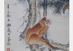 Ge Xianglan in Monkey portraits by Chinese ink painting masters