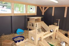 Bunny Enclosure ( pic 2 of 3)