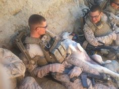 we all deserve a break today. Military Working Dogs, Military Dogs, Police Dogs, Military Service, Animals And Pets, Funny Animals, Cute Animals, War Dogs, American Soldiers