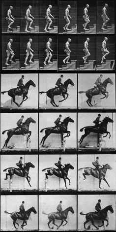 Eadweard Muybridge. Pgotography gradually monopolized factual documentation and pushed the illustrator toward fantasy nad fiction.