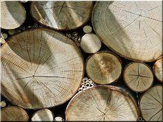 szeletelt karika falburkoló Texture, Wood, Crafts, Diy Ideas, Gardening, Surface Finish, Manualidades, Woodwind Instrument, Timber Wood