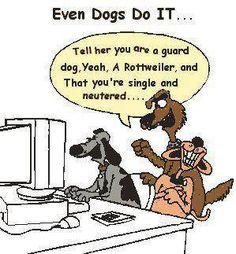 Humor (on line dating) humor cartoon dog, dog cartoons, cartoon jokes, Funny Cartoons, Funny Memes, Adult Cartoons, Funny Comedy, Political Cartoons, Adult Humor, Funny Dogs, Funny Animals, Animal Funnies