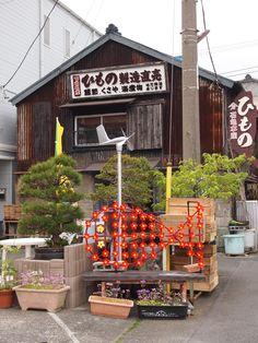 Japan | at Izu