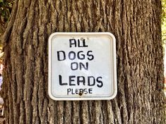 All Dogs on Leads, Please All Dogs, Objects, Stock Photos, Led