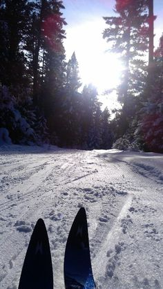xc skiing is quickly becoming one of my favourite cross training activities.