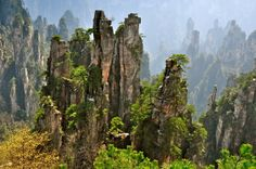 The pillars of Wulingyuan, a protected UNESCO World Heritage site in the Hunan Province, China