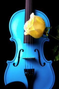 Blue Violin And White Rose by Garry Gay Violin Drawing, Violin Tattoo, Violin Painting, Violin Art, Violin Music, Violin Photography, Desktop Background Pictures, Beautiful Fantasy Art, Blue Towels