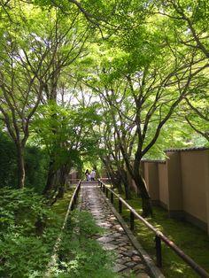 In Kyoto 'Koetsu-ji'