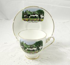 Royal Grafton Anne of Green Gables Home Tea Cup and Saucer