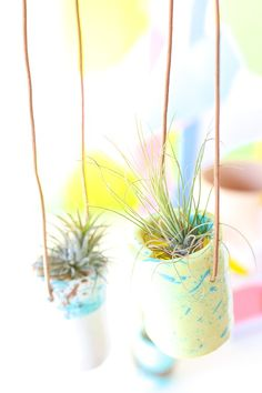 DIY HANGING CLAY HOLDERS FOR ALL YOUR PRETTY AIR PLANTS.