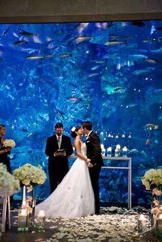 unique wedding in an aquarium