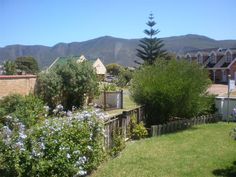 Kure Kure @ Van Haven - Kure Kure @ Van Haven offers self-catering accommodation in Sandbaai, Hermanus. Hermanus and the surrounding area of the Overberg have much to offer visitors. The combination of the sea and the mountains, ... #weekendgetaways #hermanus #southafrica
