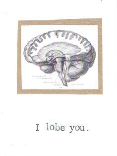 I Lobe You Brain Anatomy Science Card by ModDessert, $3.00