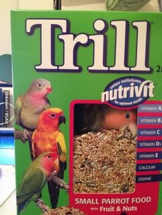 Lol. This is funny and cute. Pinner pinned: Entered room, couldnt find parrot