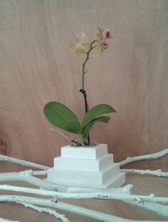 planters,flower pots,home decor,home design,decoration,orchid pots, via Spazio7