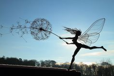 Dramatic Fairy Sculptures Dancing With Dandelions By Robin Wight
