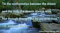 By Perseverance - self improvement article, quote and image Youth Games, Walk The Earth, My Beautiful Daughter, Self Improvement Tips, Quotable Quotes, Life Images, Talk To Me, The Rock, Life Lessons