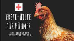 Welche Medikamente brauche ich im Notfall für meine Hühner? Erste Hilfe bei Verletzungen, Schwäche und Stress. Für einfache Wundversorgung und Pflege.