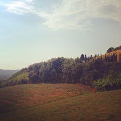 Countryside near Pisa