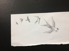 Swallows I have tattooed on my foot