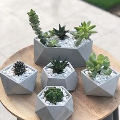 Concrete geometric planters😍 Leave your thoughts on these planters in the Comments and Tag a friend👇💚 ➖➖➖➖➖➖➖➖➖➖ 📷 Concrete Crafts, Concrete Art, Concrete Design, Succulent Pots, Cacti And Succulents, Potted Plants, Garden Plants, Cactus Plants, Indoor Cactus