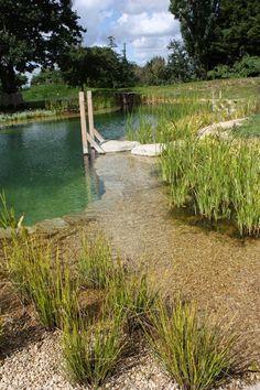 Natural Swimming Pond Designs from Gartenart Swimming Pool Pond, Natural Swimming Ponds, Natural Pond, Pond Design, Landscape Design, Fence Design, Garden Design, Ideas De Piscina, Farm Pond