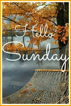 Hello Sunday