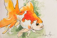 Fat Fantail Goldfish tiny original watercolor by traciethompson, $17.00