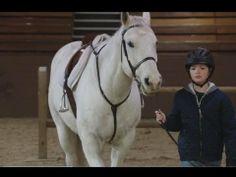 Heartland 6x17 - Breaking Point Heartland Episodes, Drama, Horses, My Love, Animals, Animales, Animaux, Dramas, Animal