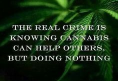 """""""The real crime is knowing cannabis can help others, but doing nothing."""""""