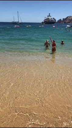 A little distracted on vacation [GIF]