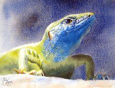 Martine Vanparijs   WATERCOLOR Watercolor Animals, Watercolor Paintings, Portraits, Chameleons, Lizards, Creepy, Contemporary Art, Dinosaur Stuffed Animal, Wildlife