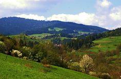 Poręba Górna, Gorce, near Poręba Wielka, spring