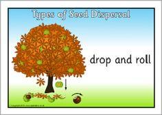 Druhy šírenia semien plagátov (SB3173) - SparkleBox