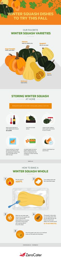 The thing about squash is, you can add it to nearly every type of food, from desserts to dinners. For example, squash makes a great ingredient in delicate fall donuts. This graphic explains it. Winter Squash Varieties, Pumpkin Varieties, Acorn Squash, Sweet And Spicy, Lunch, Stuffed Peppers, Dishes, Infographic, Recipes
