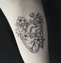 Linework anatomical heart tattoo by Harry P