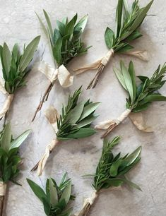 With rosemary too Herb Wedding, Rose Wedding, Floral Wedding, Wedding Flowers, Green Boutonniere, Groomsmen Boutonniere, Boutonnieres, Rustic Wedding Boutonniere, Succulent Boutonniere