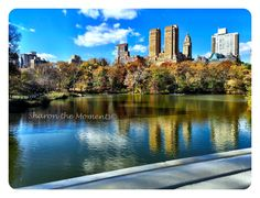 A view of New York City from Central Park. #SharontheMoments #GrahamFamRec