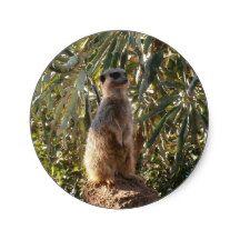 Meerkat_Guard,_ Round Sticker