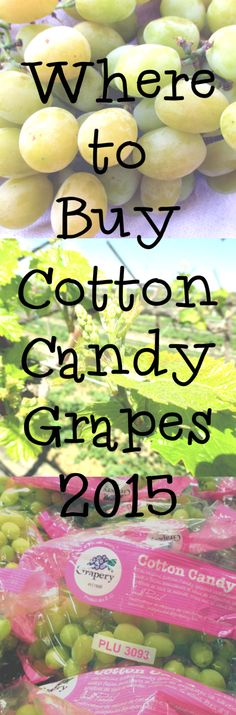 Where to Buy Cotton Candy Grapes 2015 – Eiscreme rezepte Jelly Recipes, Jam Recipes, I Love Food, A Food, Easy Jam Recipe, Recipe Box, Okonomiyaki Recipe, Cotton Candy Grapes, Grape Jam