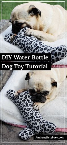 DIY dog bone water bottle holder tutorial - Dogs LOVE these!