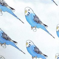 Budgie Fabric Make-up Purse