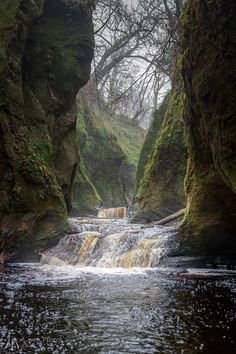 Finnich Glen with some mist, Scotland