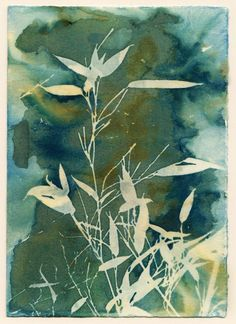 Bamboo Garden Art Print by Krista McCurdy. Sun Prints, Nature Prints, Fine Art Prints, Art Nature, Canvas Prints, Watercolor Negative Painting, Abstract Watercolor, Art Mural Floral, Cyanotype Process