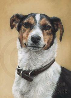 Jack russell terrier JRT portrait by Mary Herbert #OilPaintingDog