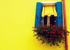 Who's afraid of red yellow and blue? by pandora4image, via Flickr