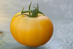 """Old German"" heirloom tomato Landscaping Ideas, Garden Landscaping, Types Of Tomatoes, Heirloom Tomatoes, German, Gardens, Landscape, Vegetables, Fruit"