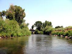 USGS River Info