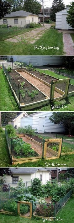 DIY U Shaped Raised Garden Bed. Idea for keeping rabbits out DIY U Shaped Raised Garden Bed. Veg Garden, Garden Boxes, Lawn And Garden, Garden Path, Edible Garden, Vegetable Gardening, Vege Garden Ideas, Container Gardening, Allotment Ideas