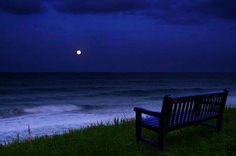 What a View.I could sit for hours upon this bench watching the moonlight dance on the salty ocean waves. Peaceful Places, Beautiful Places, Beautiful Pictures, Beautiful Beach, Walt Disney, Puerto Rico, Azul Indigo, I Love The Beach, Just Dream